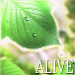 10_05_alive.png